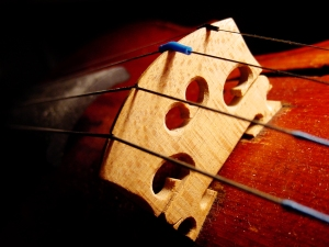 Violin_bridge